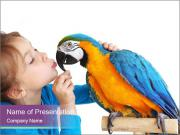 Girl with her domestic ara parrot PowerPoint Templates