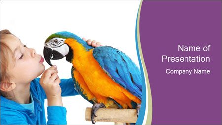 Girl with her domestic ara parrot PowerPoint Template