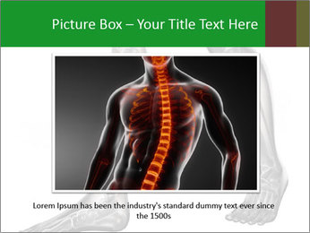 Human radiography scan PowerPoint Templates - Slide 16