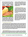 0000093478 Word Templates - Page 4