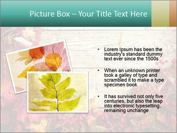 Fallen leaves PowerPoint Template - Slide 20