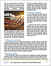0000093484 Word Template - Page 4