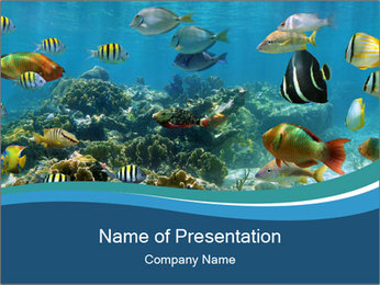 Underwater PowerPoint Template - Slide 1