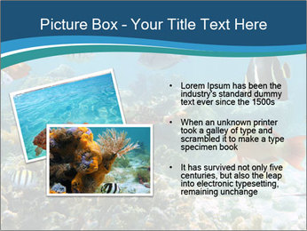 Underwater PowerPoint Template - Slide 20