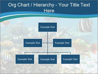 Underwater PowerPoint Template - Slide 66