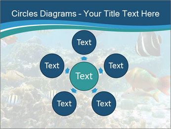 Underwater PowerPoint Template - Slide 78