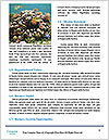 0000093486 Word Template - Page 4