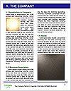 0000093487 Word Template - Page 3