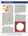 0000093490 Word Templates - Page 3