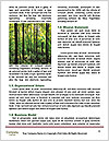 0000093491 Word Templates - Page 4