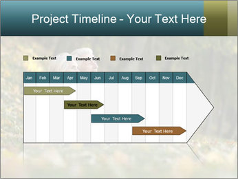 Happy old people sitting PowerPoint Template - Slide 25