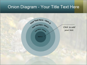 Happy old people sitting PowerPoint Template - Slide 61