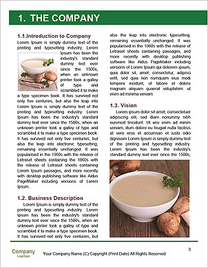 0000093499 Word Template - Page 3