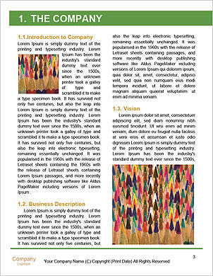 0000093500 Word Template - Page 3