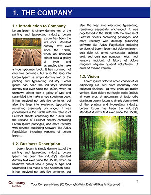 0000093502 Word Template - Page 3