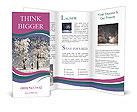 0000093504 Brochure Templates