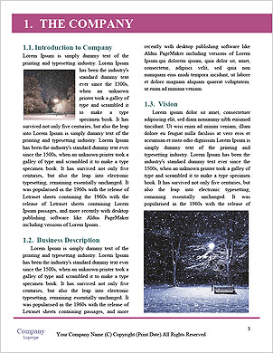 0000093504 Word Template - Page 3
