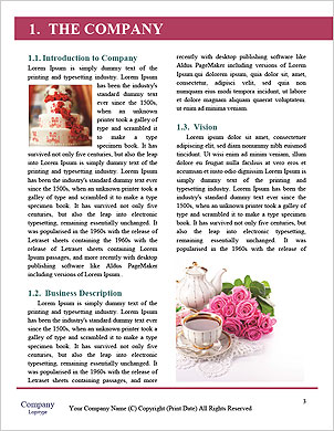 0000093505 Word Template - Page 3