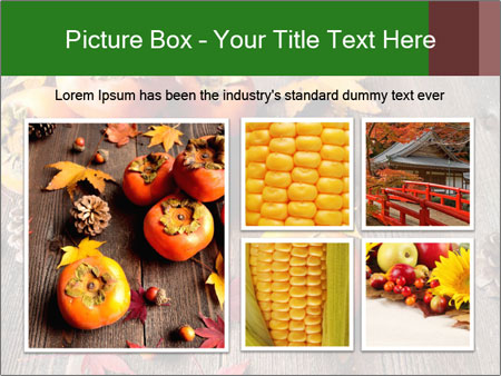 0000093574 Темы слайдов Google - Слайд 19