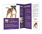 0000093611 Brochure Templates