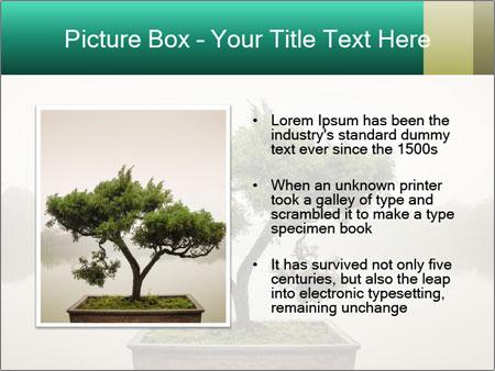 0000093641 Temas de Google Slide - Diapositiva 13