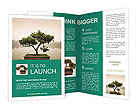 0000093641 Brochure Templates