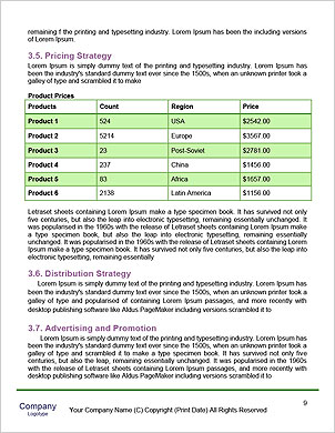 0000093705 Word Template - Page 9