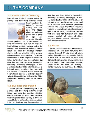 0000093706 Word Template - Page 3