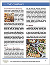 0000093709 Word Templates - Page 3