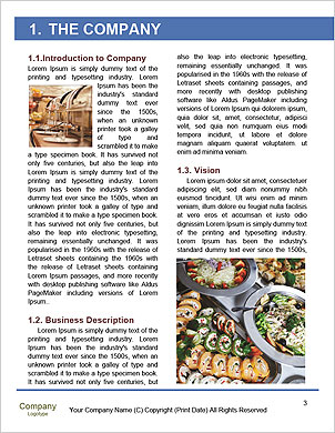 0000093709 Word Template - Page 3