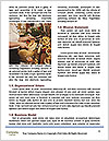 0000093709 Word Templates - Page 4