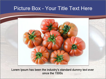 0000093710 PowerPoint Template - Slide 15