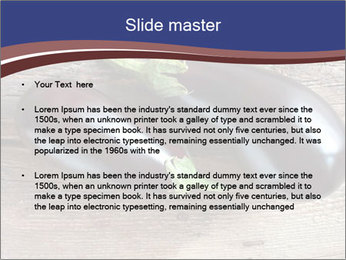 0000093710 PowerPoint Template - Slide 2