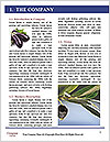 0000093710 Word Template - Page 3