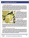 0000093710 Word Template - Page 8