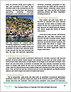 0000093712 Word Templates - Page 4