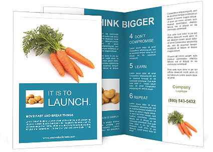 0000093714 Brochure Template
