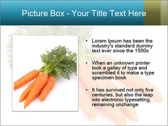 0000093714 PowerPoint Templates - Slide 13