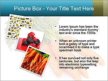 0000093714 PowerPoint Templates - Slide 17