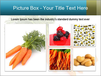 0000093714 PowerPoint Templates - Slide 19
