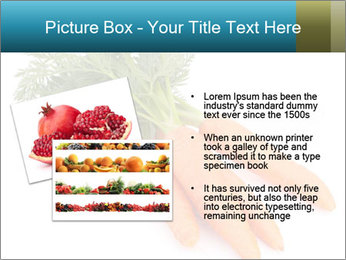 0000093714 PowerPoint Templates - Slide 20