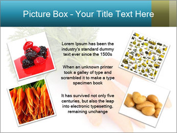 0000093714 PowerPoint Templates - Slide 24