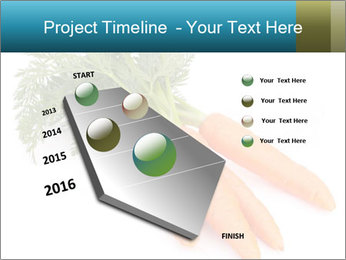 0000093714 PowerPoint Templates - Slide 26