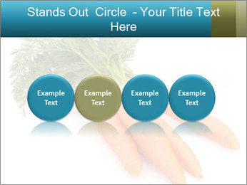 0000093714 PowerPoint Templates - Slide 76