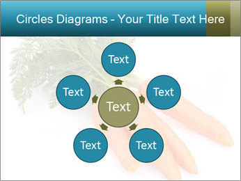 0000093714 PowerPoint Templates - Slide 78