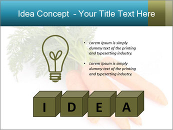 0000093714 PowerPoint Templates - Slide 80