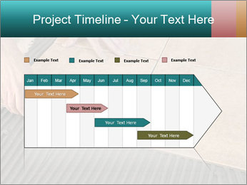 0000093715 PowerPoint Template - Slide 25