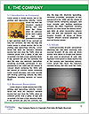 0000093718 Word Templates - Page 3