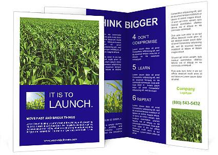 0000093722 Brochure Templates