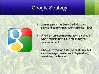 0000093722 PowerPoint Templates - Slide 10